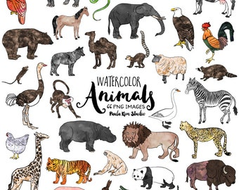 Animal Watercolor Clip Art Commercial Use Instant Digital Download