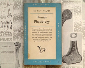 1950s human biology book Human Physiology by Kenneth Walker
