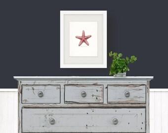 Coastal Decor Sea Shell  - Sugar Sea Star Giclee Print 8x10 bright red