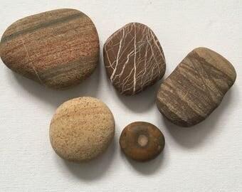 Naturally Patterned Beach Pebbles -Earth Tones Decorative Beach Decor