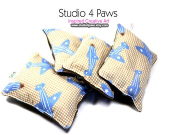 Guinea Pig Luxury Small Pillows - (Planes)