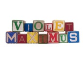 Custom Vintage Wooden Alphabet Blocks Baby Name Nursery Decor Newborn Photography Maternity Photos Vintage Baby Gifts