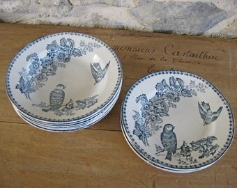 Antique French transferware plates and bowls, 10 pieces Longwy Mésange birds pattern