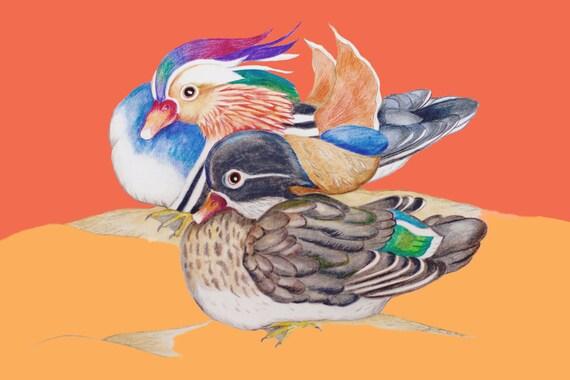LIMITED EDITION Mandarin Ducks at Sunset, Duck Art, Ducks Love, Symbol Loyality, Symbol of Love, Mandarin Duck, Mandarin Bird, Asian Ducks