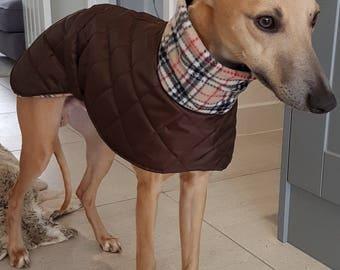 Italian greyhound coats readymade