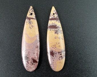 Beautiful  cut and polished sonoran jasper ,earrings set,  Jewelry making supplies  B6569