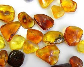 Natural Baltic AMBER Stone LOOSE Beads Drilled 20-25 pcs 10 gms hand-cut