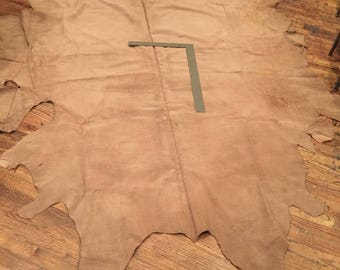 Large Huge Tanned Buffalo Bison Leather Hide 4-5oz 50 Sq Ft Thick