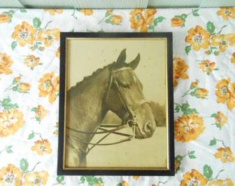 Aiken SC Horse Racing Hitchcock Bostwick Era Famous Photographer's Steeplechase Polo Selection Original Black & White Photo Black Frame
