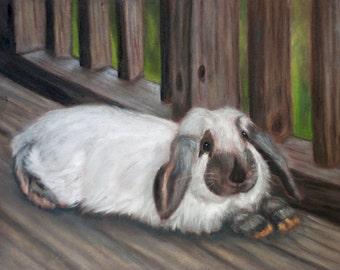 Punky Bunny 1
