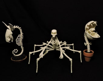 "Forgotten Boneyard 3"" Replica Figurine Set - Series 1"