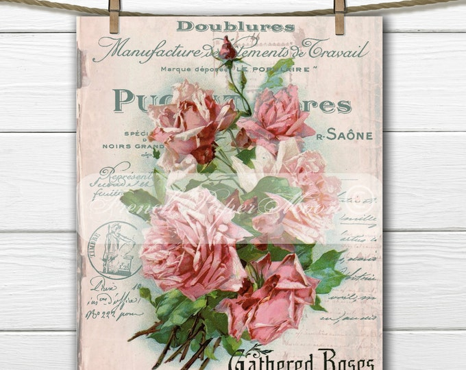 Vintage Shabby Digital Roses, Pink Roses, French Typography, Victorian Rose Fabric Transfer Graphic Download