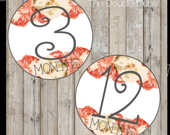 Baby Month Stickers Printable - Floral Baby Month Stickers - Baby Girl Month Stickers - Digital Download Baby Month Stickers
