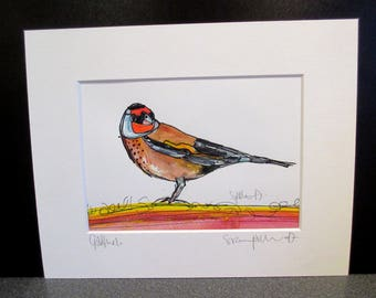 Goldfinch...An original watercolour,pastel and pen painting by Suzanne Patterson