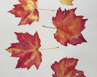 Autumn Leaves Original Watercolor Painting