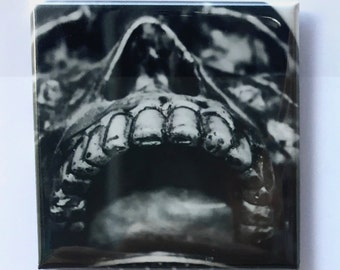 "Skull Face Magnet - 2""x2"", Original Photograph by EyeWatch Photo, Fine Art Photography, Goth Photography, Skulls, Mix any 4!"
