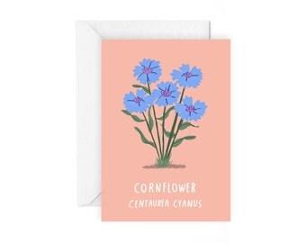 Cornflower greetings card - botanical plant stationery