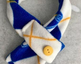 University of Kentucky pet scarf