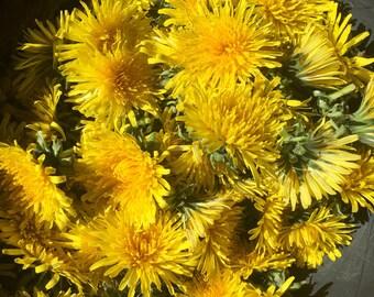Dried dandelion flowers • dandelion flower tea • dandelion flower wine • dandelion salve etc