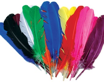 Turkey Feather Quill 25 Count, Assorted Color Crafting Turkey Feathers For Using As Writing Quill, Dyed Turkey Feathers For Craft Projects