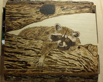 Hung Over - Raccoon Wood Burn on Basswood
