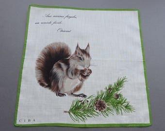 Vintage 60s Ciba Advertising Novelty Hankie Handkerchief Otrivine and the Squirrel
