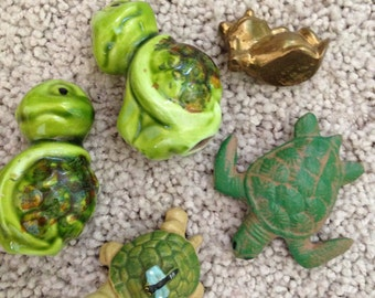 Instant Turtle Collection for the Turtle Lover