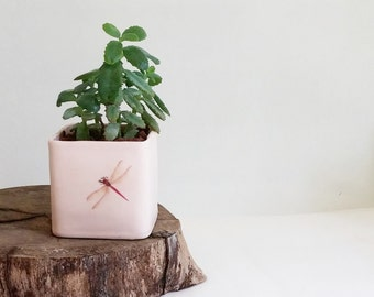 Ceramic Planter, Pink Ceramic Plant Pot, Succulent Planter, Cactus Planter, Pink Dragonfly Decor, Gift For Mom, Birthday Gift, Gift For Her