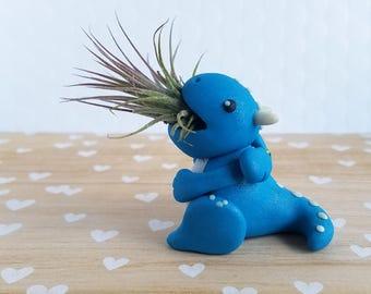 Blue Dragon Air Planter, Air Plant Holder, Gift for Him, Unique Gift, Indoor Gardener, Gift Women, Dorm Decor, Cute Dragon Planter