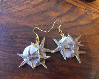 Starfish  Beach Earrings, Handmade Ocean Jewelry