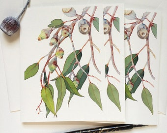 Any occasion greeting card set: 3 eucalyptus cards & 3 envelopes - Australian nature cards for overseas friends - botanical stationery