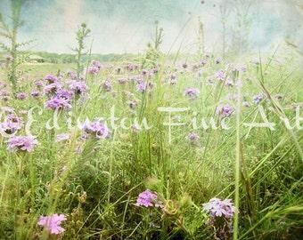 Wildflowers photo, Purple Flower photo, spring decor, nature photo, flowers, home decor, green, purple, botanical art, nature, wildflowers