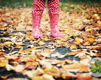 Crunching the leaves, A4 photography print child wellies autumn colour