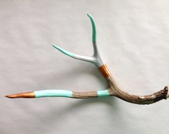 Painted Deer Antler Shed - Large - Mint, Copper, Grey