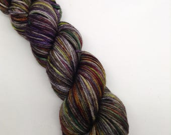 Trail Blazers - Hand Dyed Worsted Weight Yarn - Township (218 yards)