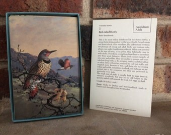 Reserve for M Hamilton... Vintage Western Birds Card Set / National Audubon Society Educational Card Set /Free shipping