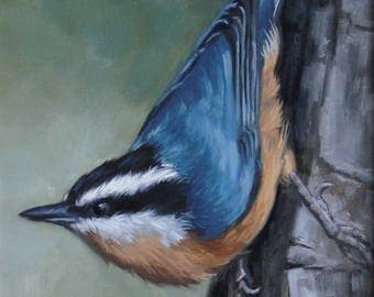 Red breasted nuthatch - Nuthatch - bird painting - Open edition print - bird print