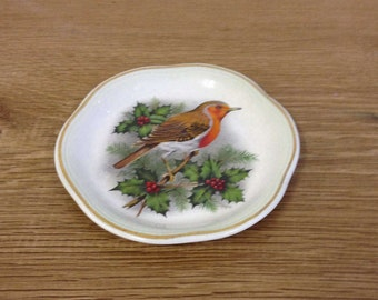 Vintage 1960's Bright Retro Royal Worcester Palissy Decorative Robin Plate. Great Condition.