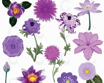 Purple Japanese Flower Clipart Collection