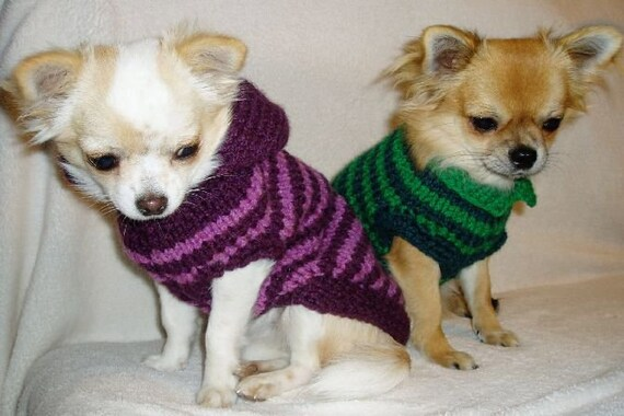 chihuahua clothes pet sweater sweater vest. Black Bedroom Furniture Sets. Home Design Ideas