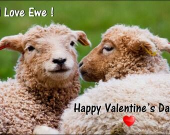 valentines card - sheep valentines card - love you card - valentine card - funny card - valentine day card - love ewe card