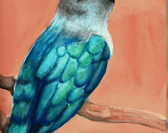 Chestnut Bellied Malkoa Watercolor Bird Print