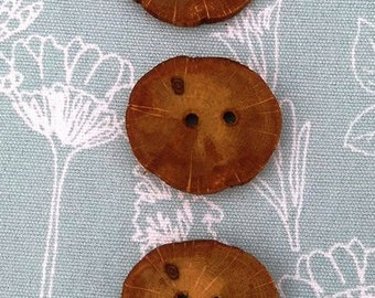 Three Oak wooden buttons, handmade from tree branch slices