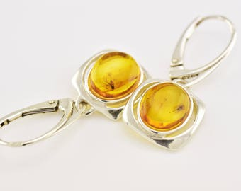 Natural Baltic Amber Sterling Silver 925 Earrings with FOSSIL INSECTS