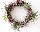 Air Plant Wreath with Pink Amaranth Flowers and Spanish Moss
