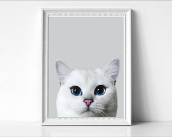 White Cat Print, Wall Art Photo, Animal Print, Photography, Modern Minimal, Instant Download, Cat Photo, Home Decor, Cute Cat