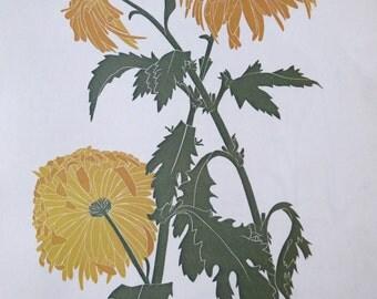 Vintage Chrysanthemum illustration, book page, book print, linoprint book plate B51