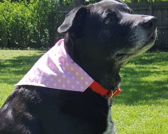 Dog Bandana - Pink Polka Dots