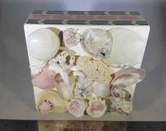3D Seashell Collage Box - Underwater Jewel Box