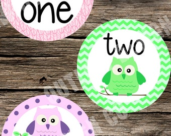 Gender Neutral Baby Monthly Milestone Markers Printable Instant Download Owls Cute Boy Girl Feathers Stripes Polka Dots Photo Props
